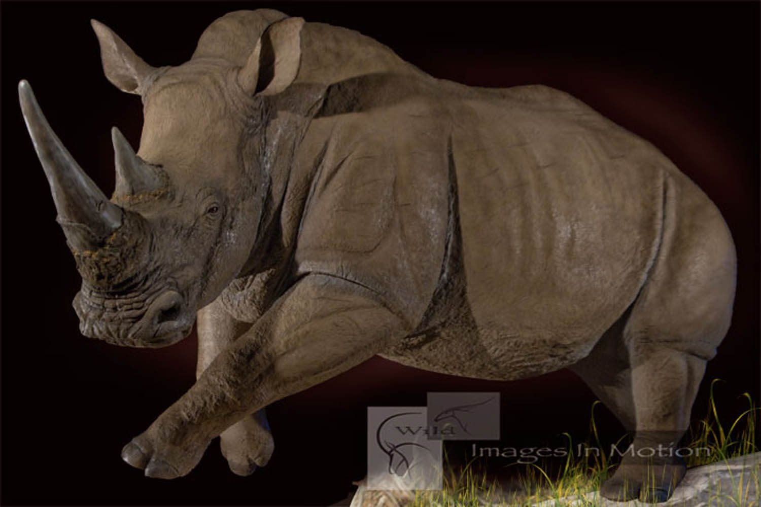 Reproduction Life-size Rhino